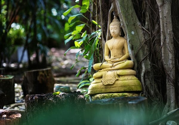 Spirit Yoga Weiterbildungs-Retreat für Yogalehrende auf Koh Samui